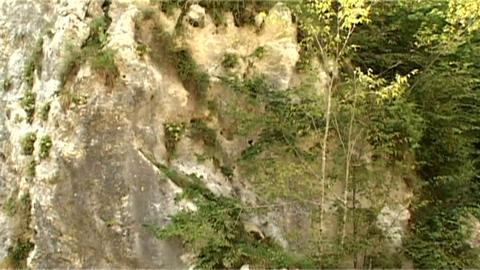 ntsc stone with horizontal pan 2 Stock Video Footage