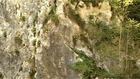 ntsc stone with horizontal pan 2 Footage