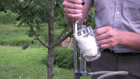 Pouring beer into a stein 2 Footage