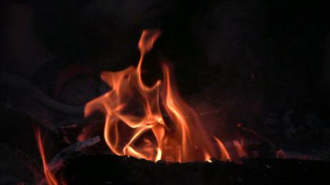 Bonfire 3 Stock Video Footage