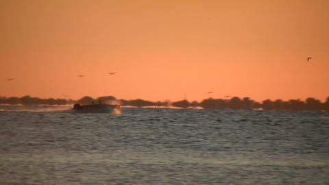 Motor boat speeds down the lake at sunset (High Definition) Stock Video Footage