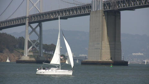 Sailboat sails across the sunny San Francisco Bay Footage