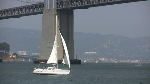 Sailboat sails across the sunny San Francisco Bay Stock Video Footage