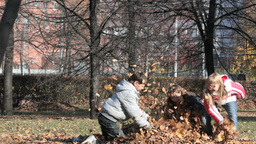 Children Playing With Autumn Leaves Footage