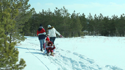 Couple Pulling Their Children On Sledge Footage