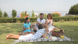 Family enjoying food in picnic Footage