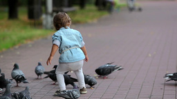 Little Girl Feeding Pigeons Footage