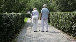 Elderly Couple Walking In Park Footage
