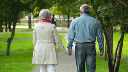 Carefree Seniors Walking Away In The Park Holding Hands With Affection Footage