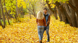 Romantic couple walking across the blanket of golden leaves in the park Footage