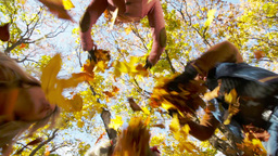 Ecstatic friends throwing armfuls of leaves up in the air in autumn park Footage
