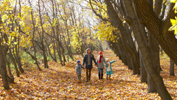 Tilt down of parents and kids spending their autumn weekend together outdoors Footage