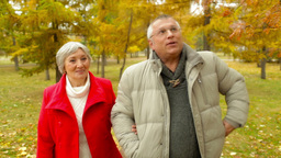 Seniors On A Walk stock footage