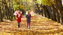 Lovely twin girls with parasols walking along the autumn park lane Footage