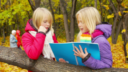 Twin schoolgirls discussing homework outdoors on an autumn day in park Footage