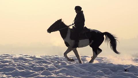 Man on horseback HD Footage