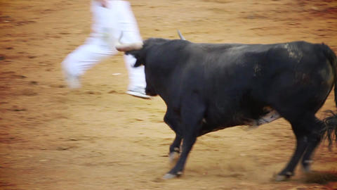spanish bullfight Footage
