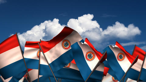 Waving Paraguayan Flags Animation