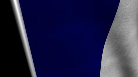 France Flag transition LtoR with Alpha/Matte Animation