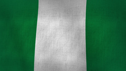 Nigeria Flag Background Textured (Loop-able) Animation