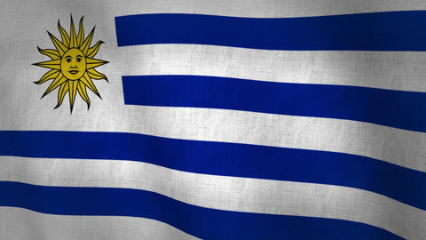 Uruguay Flag Background Textured (Loop-able) Animation
