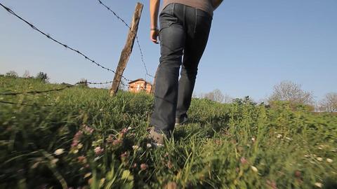 hodanje kroz travu Footage