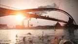 seagull sea birds. swan lake. bridge at sunset Footage
