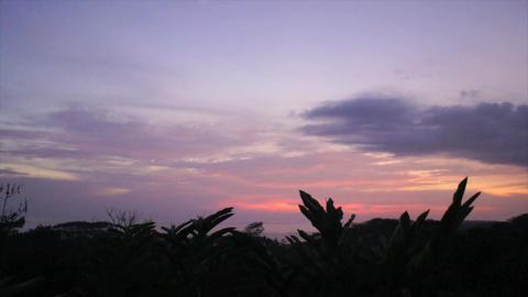 Caribbean Summer Footage