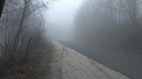 Super Scary Winter Foggy Forest Road 1 pan Footage