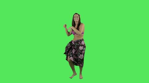hawaii hula dancer Footage