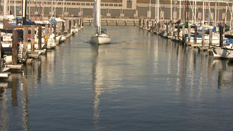 Boats and yachts are gently floating in the docks Footage