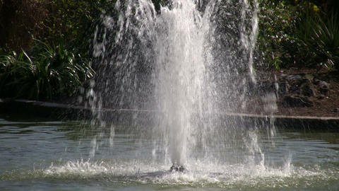 Water sprays up from fountain on a sunny day Stock Video Footage