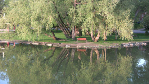 Bench overlooks water in a beautiful scenic park (High... Stock Video Footage