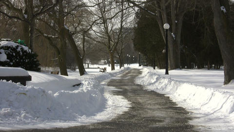 Winter scenic with walking path in the park (High... Stock Video Footage