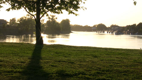 Shot of Sacramento River as suns sets behind a tree Stock Video Footage
