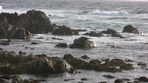 Rough ocean waves crash against the rocky California shoreline Live Action