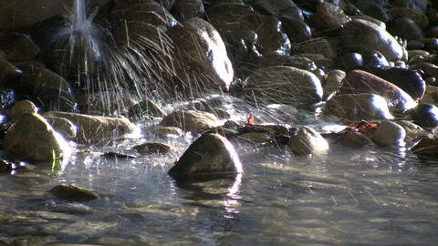 Falling water sprays into the sunlight stream (High... Stock Video Footage