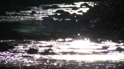 Sunlight creates sparkles on the stream's flowing surface... Stock Video Footage