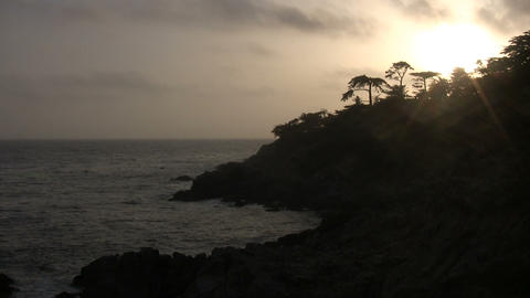 Trees are silhouetted along the coast during sunset Stock Video Footage