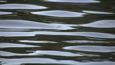 Closeup of water's surface rippling and reflecting sky... Stock Video Footage