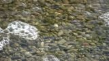 Bubbles Are Floating On The Clear Water's Surface (High Definition) stock footage