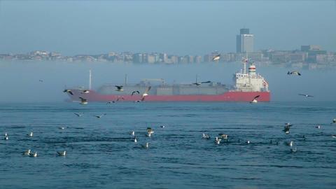 Misty weather gas tanker passing through Bosporus Footage