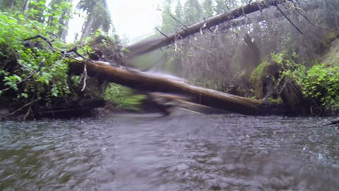 Raining At A Natural River stock footage