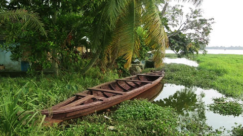Picturesque scene in Kerala Backwaters Footage