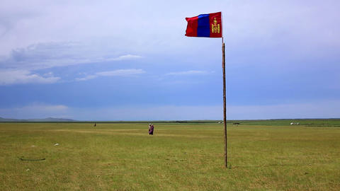 Mongolian flag waving over steppe Footage