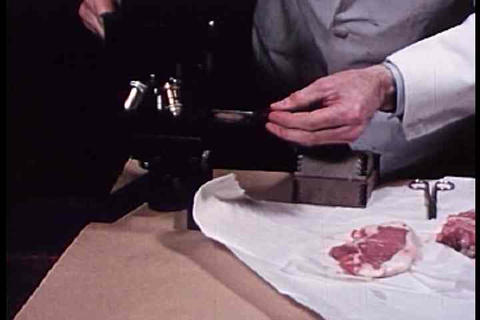 Meat is inspected and tested in this 1942 film abo Footage