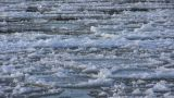 Ice Drift In A River At Sunset 5 stock footage