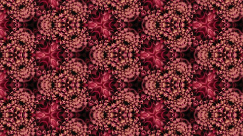 Organic kaleidoscope from blooming red dahlia flower 13a Stock Video Footage