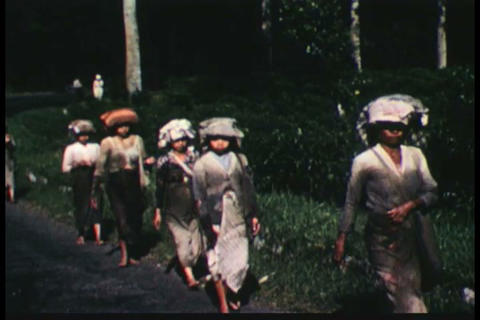 Indonesia emerges as a new nation in the 1950s Live Action
