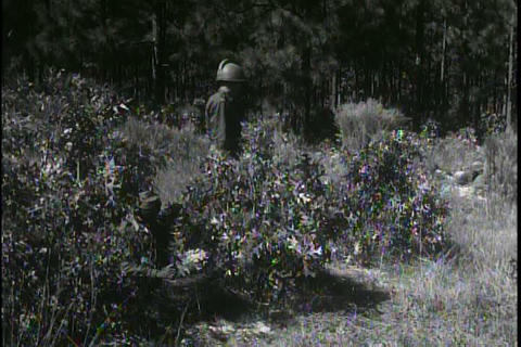 The army uses exciting new weapons in the 1950s Footage